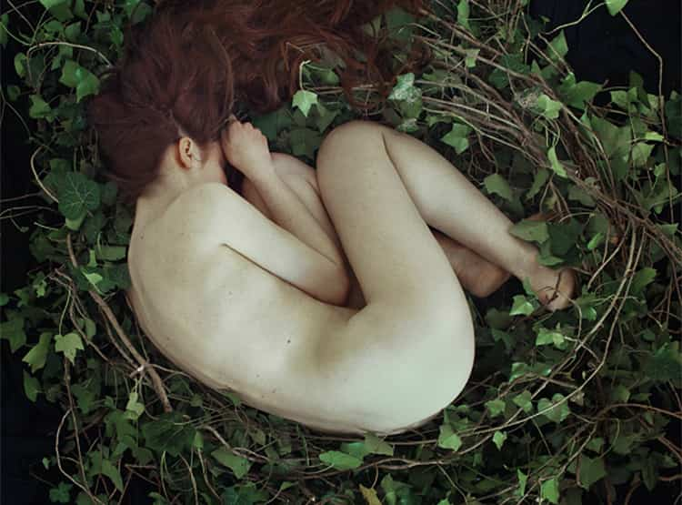 The Nest / Fotógrafa Marta Bevacqua