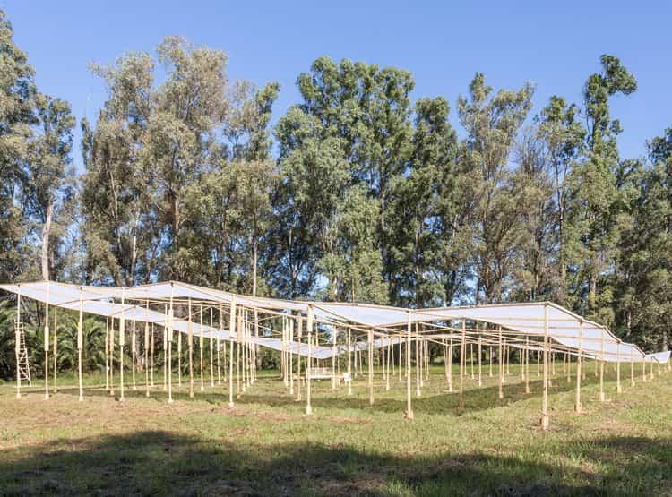 Estructura extendida de Monoblock / Hello Wood Argentina