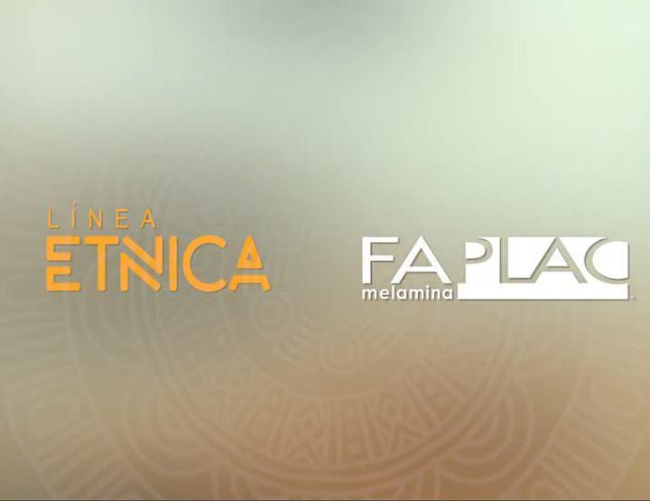 Nuevo lanzamieno - Colección 2019 / Faplac